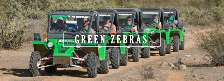 green-zebra-tom-cars-770x280