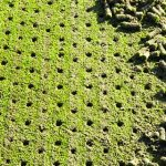 Aerification at We-Ko-Pa | Why, How and When