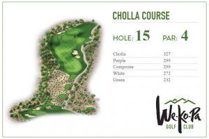 how to play We-Ko-Pa Golf Club Cholla Hole 15