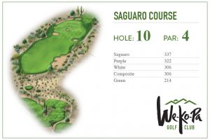 how-to-play-saguaro-hole-10