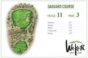 how-to-play-saguaro-hole-11