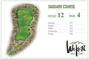 how-to-play-saguaro-hole-12