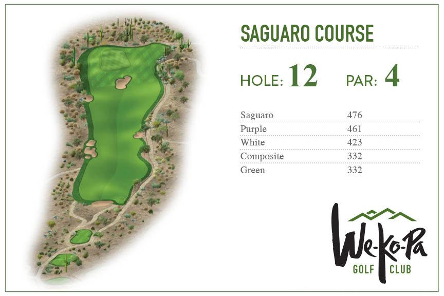 how-to-play-saguaro-hole-12