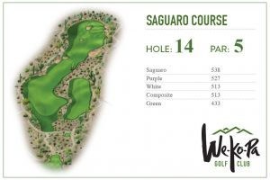 how-to-play-saguaro-hole-14