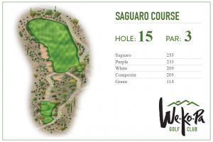 how-to-play-saguaro-hole-15