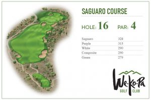 how-to-play-saguaro-hole-16