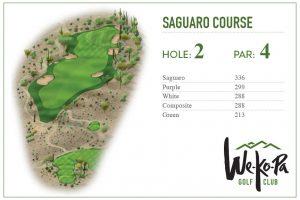 how-to-play-saguaro-hole-2