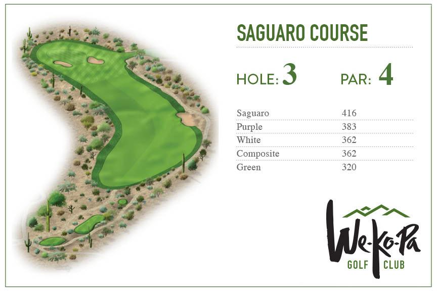 how-to-play-saguaro-hole-3