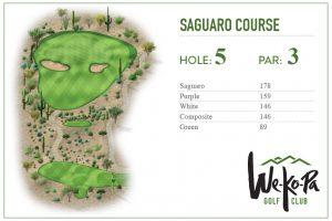 how-to-play-saguaro-hole-5