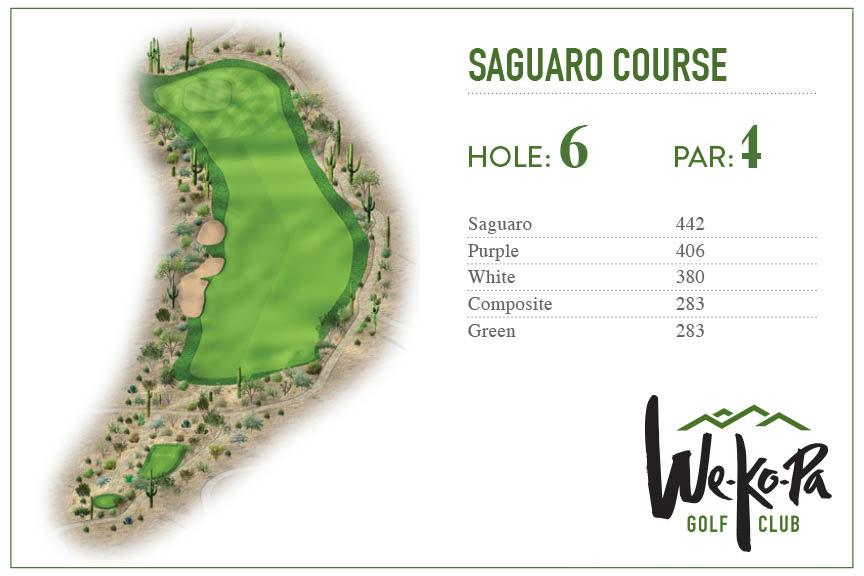 how-to-play-saguaro-hole-6
