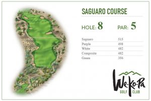 how-to-play-saguaro-hole-8