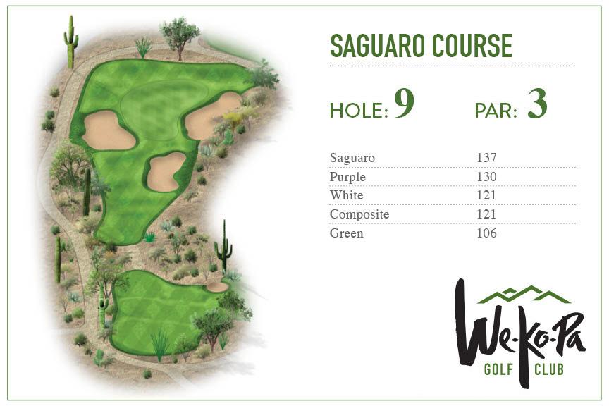 how-to-play-saguaro-hole-9